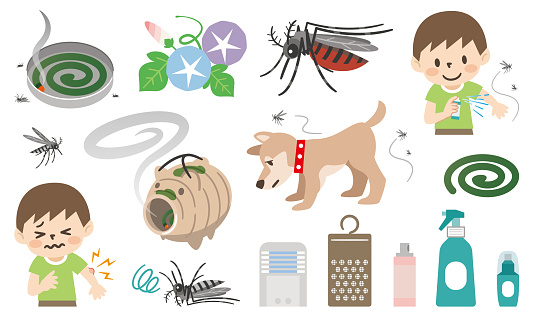 Set of illustrations of preventive measures against insect bites