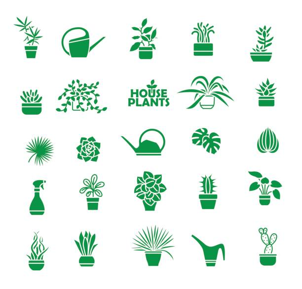 Set of indoor plants Big set of indoor plants, isolated vector icons potted plant stock illustrations