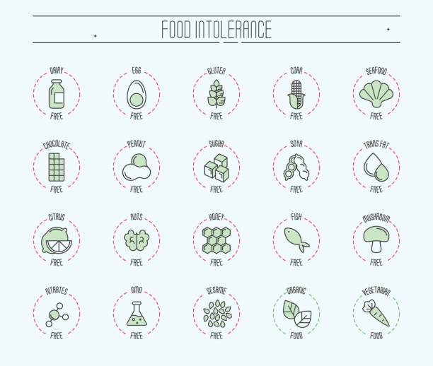 Set of ingredient warning label icons. Food intolerance. Common allergens (gluten, lactose, soy, corn and more), sugar and trans fat, vegetarian and organic symbols. Vector thin line illustration. vector art illustration