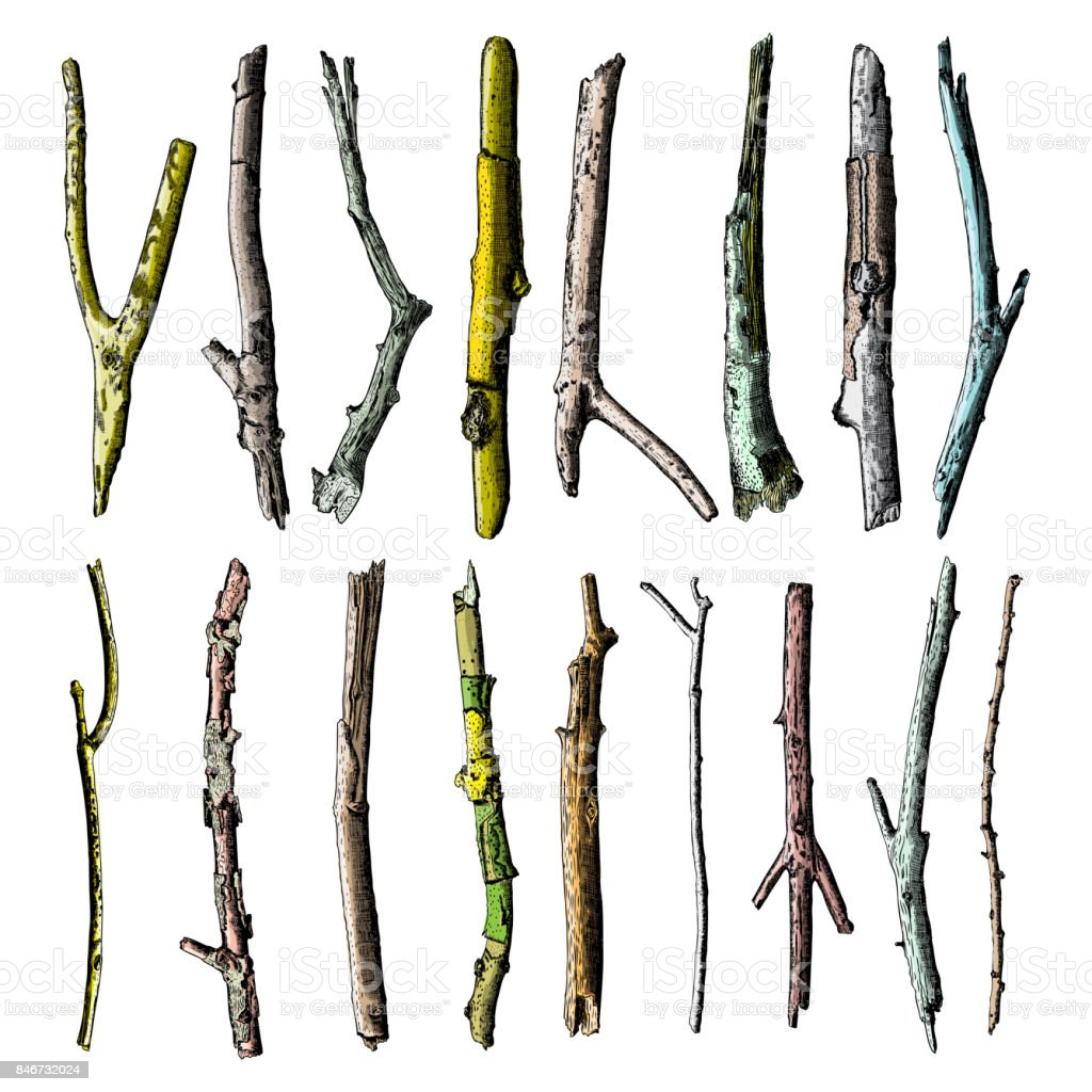 This is a photo of Amazing Stick Tree Drawing