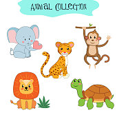 Set of isolated animals and birds. A collection of funny animals. Cute animals: forest, farm, home in a cartoon style. Elephant, Jaguar, Leopard, turtle, lion, monkey