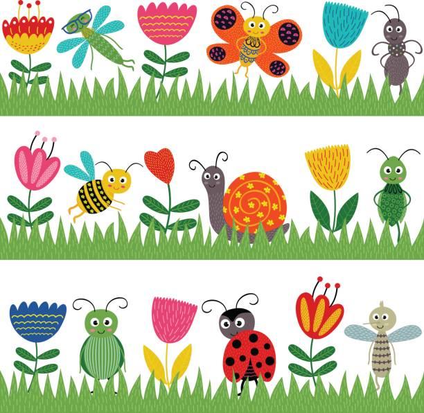set of isolated borders with funny insect – artystyczna grafika wektorowa