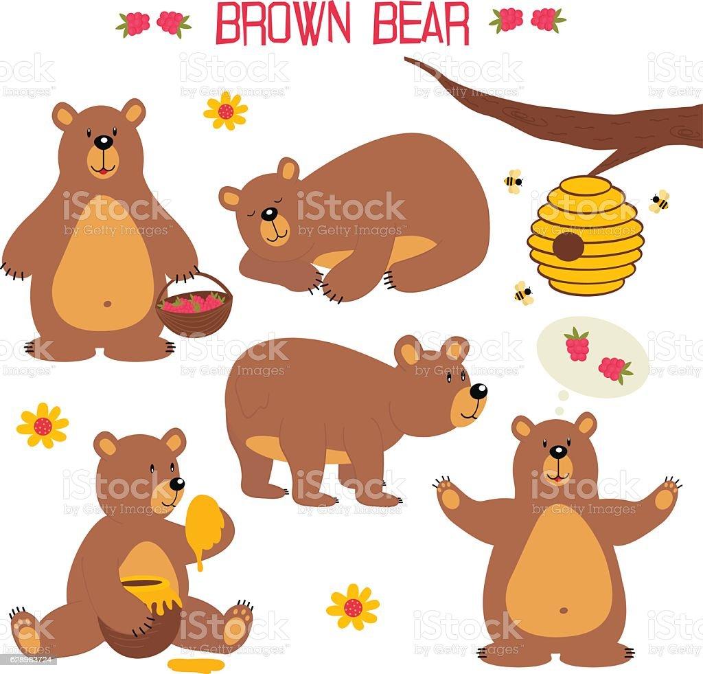 set of isolated brown bear vector art illustration