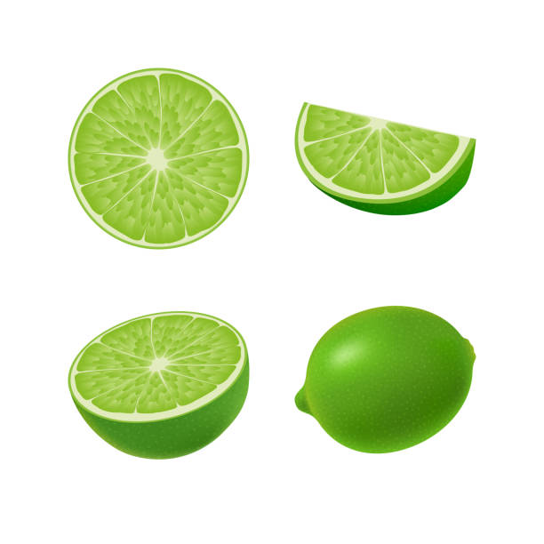 Set of isolated colored green lime, half, slice, circle and whole juicy fruit on white background. Realistic citrus collection. Set of isolated colored green lime, half, slice, circle and whole juicy fruit on white background. Realistic citrus collection lime stock illustrations