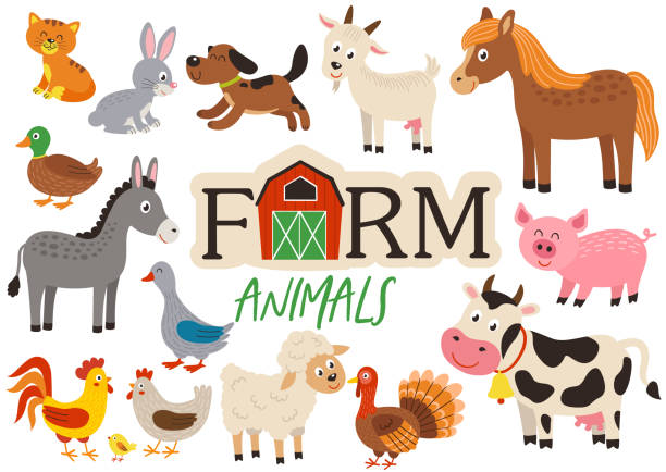 set of isolated cute farm animals set of isolated cute farm animals- vector illustration, eps farm animals stock illustrations