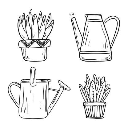 Set of isolated doodle icons in line art style. Houseplants in pots and watering cans or jugs. Black and white stickers of cacti or succulents with large leaves.