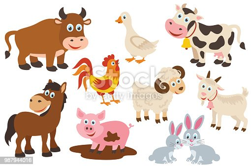set of isolated farm animals -  vector illustration, eps