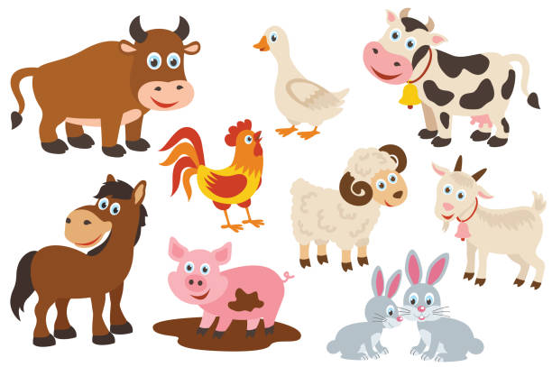 set of isolated farm animals vector art illustration