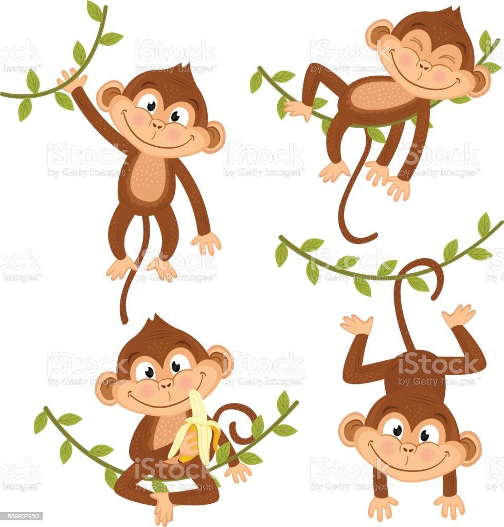 set of isolated monkey hanging on vine