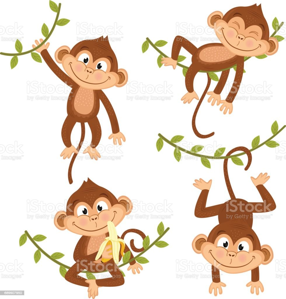 set of isolated monkey hanging on vine - ilustración de arte vectorial