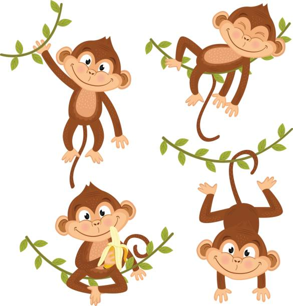 set of isolated monkey hanging on vine - Illustration vectorielle