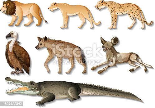 istock Set of isolated Wild African Animals on white background 1301122342