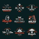 Set of Japan Ninja concepts. Ninjato sword insignia design. Vintage