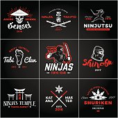 Set of Japan Ninjas insignia design. Vintage ninja mascot badge