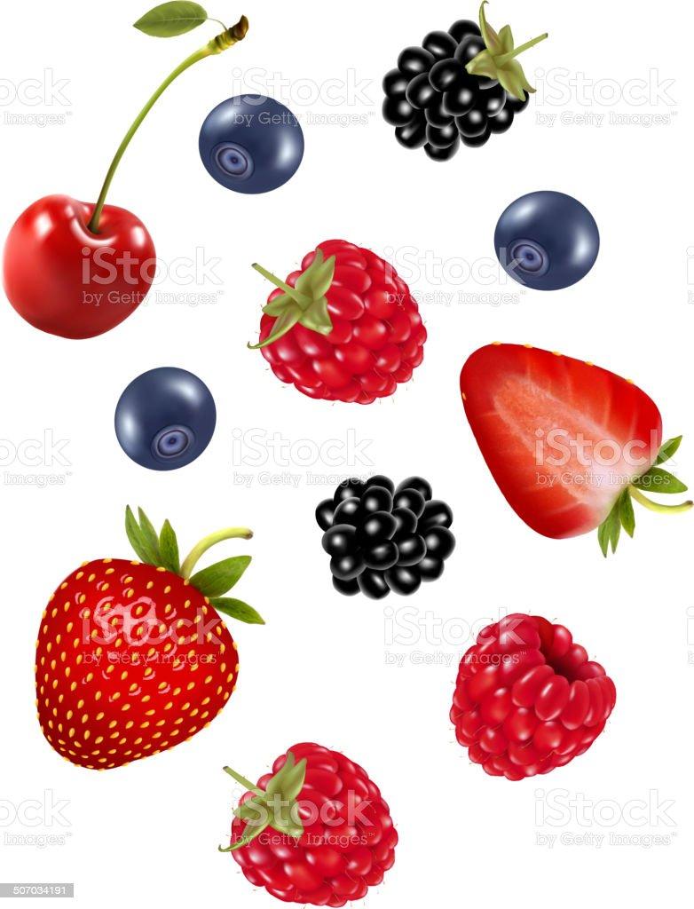 Set of juicy berries. Vector. vector art illustration