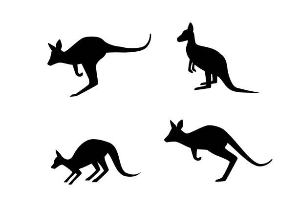 Set of kangaroo in silhouette style, vector art Set of kangaroo in silhouette style, vector art design kangaroo stock illustrations
