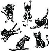 set of kittens with bones