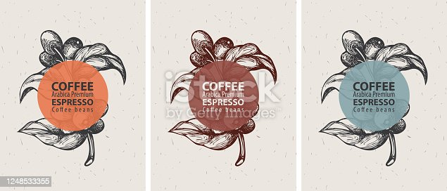 Coffee labels in retro style. Set of three vector labels for coffee beans with hand-drawn coffee sprig, coffee beans and the words Arabica premium, Espresso on an old paper background