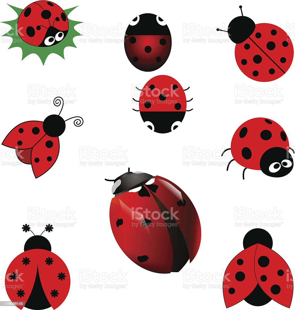 Set of ladybugs vector art illustration
