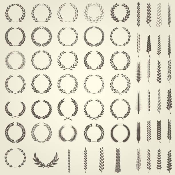 laurel çelenk ve hanedan tarzı buğday başak kümesi - buğday stock illustrations