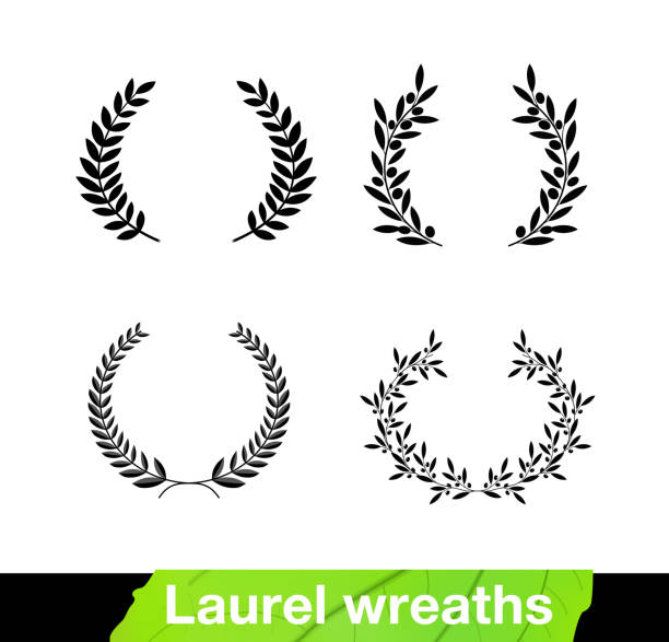 Set of laurel wreaths. Vector illustration white background. It can be used in the design for websites, infographic, catalogs, brochures, magazines, etc. EPS10. bay leaf stock illustrations