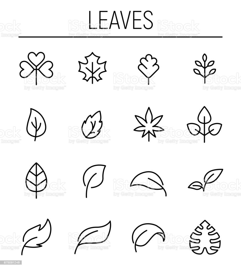 Set of leaf icons in modern thin line style. vector art illustration
