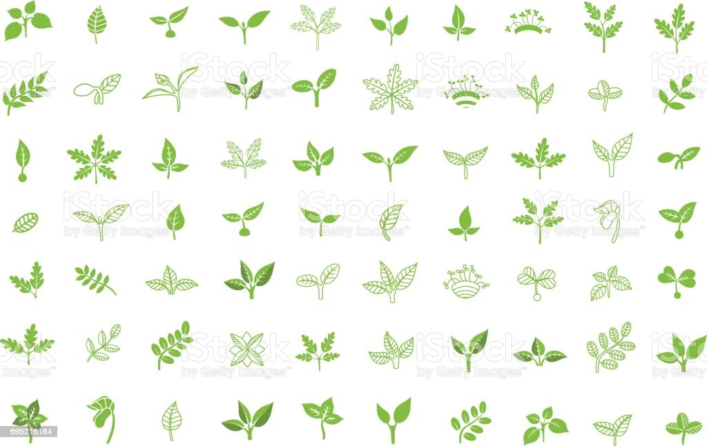 Set of leaves design elements. Sprout new life vector icon vector art illustration