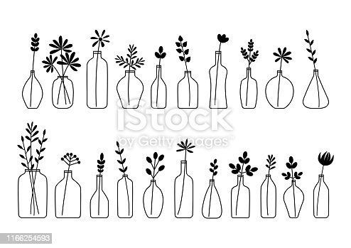 Set of leaves, flowers and branches in bottles and vases isolated on white