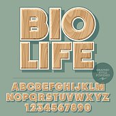 Vector set of alphabet letters, numbers and punctuation symbols. Wooden sign for ecology activity with text Bio life. File contains graphic style