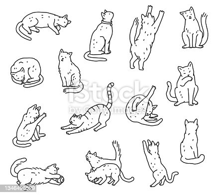 istock Set of line cats in different poses. Not pedigreed pets outline doodle black white isolated vector illustration. 1346495529