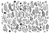 Set of   line doodles  hand drawn design floral elements