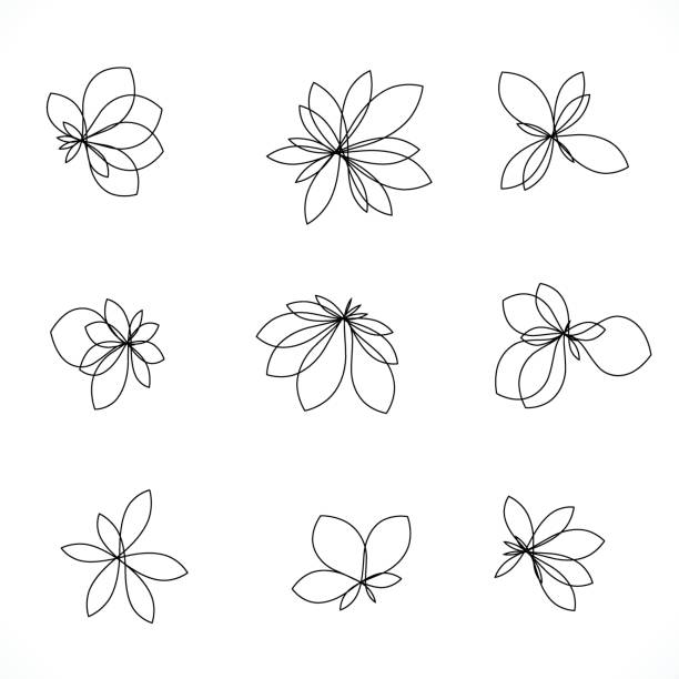 set of line style floral icon - flowers stock illustrations, clip art, cartoons, & icons