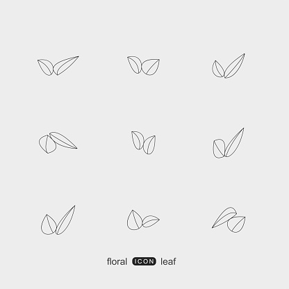 set of line style plant floral and leaf pattern icon