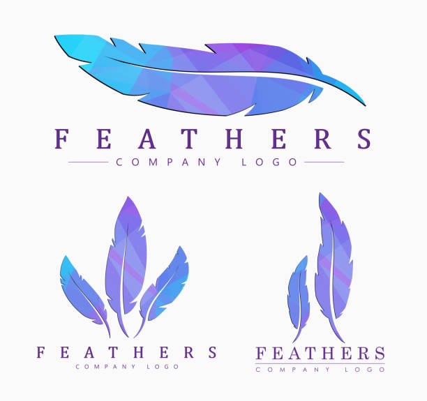 Set of logos of feathers logo templates Set of different shapes of feathers. with abstract polygonal elements. bristle animal part stock illustrations