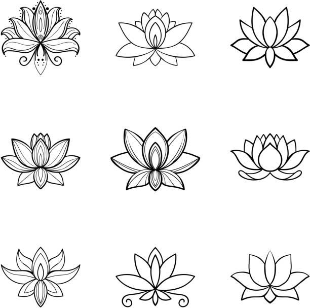 ilustrações, clipart, desenhos animados e ícones de conjunto de ícones de flor de lótus. sinal de spa. projeto de ioga - lotus