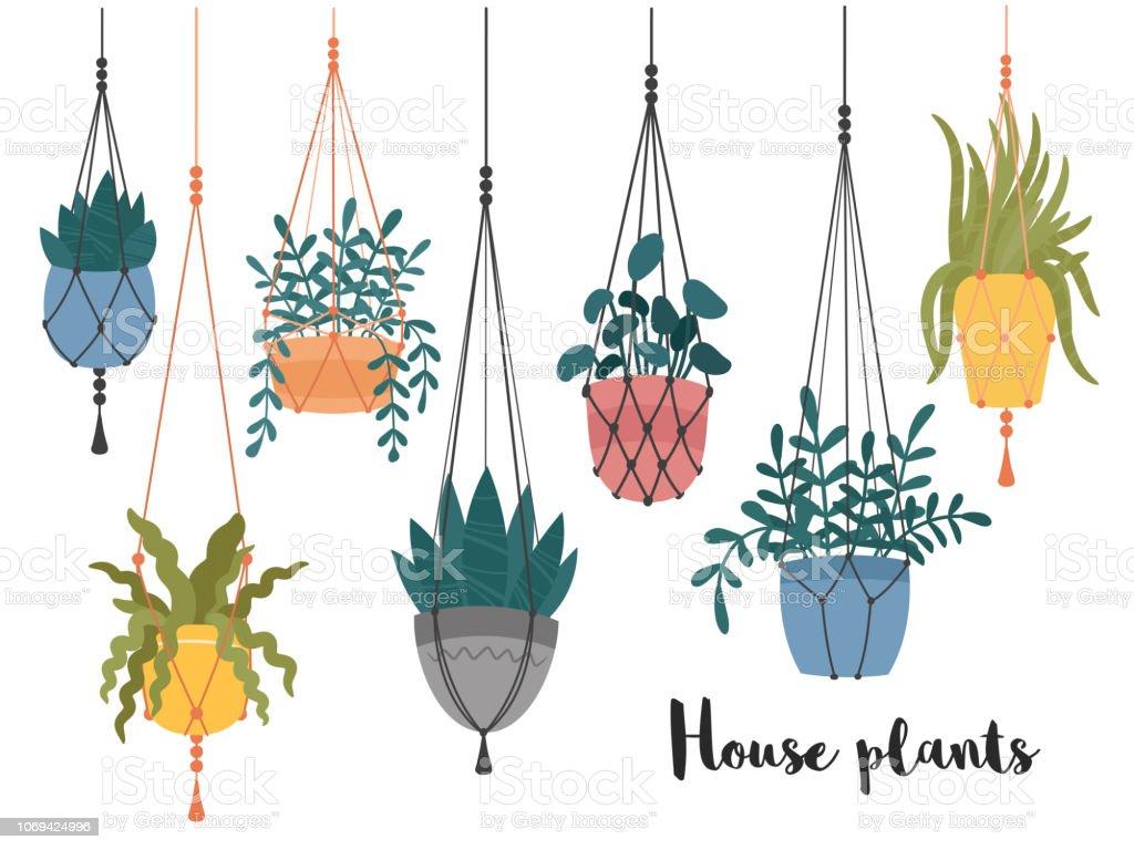 Quelle Ficelle Pour Macramé ensemble de macramé suspendus des plantes en pots cintres