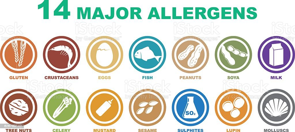 set of major allergens icons vector art illustration