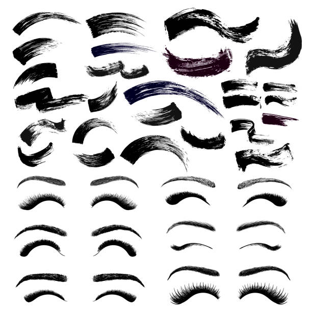 Set of make-up cosmetic mascara brush stroke texture design. False eyelashes and eyebrows. Realistic mascara smear template. Mascara eyelashes. Hand drawn lash scribble swatch. Vector illustration. Set of make-up cosmetic mascara brush stroke texture design. False eyelashes and eyebrows. Realistic mascara smear template. Mascara eyelashes. Hand drawn lash scribble swatch. Vector illustration. fabric swatch stock illustrations