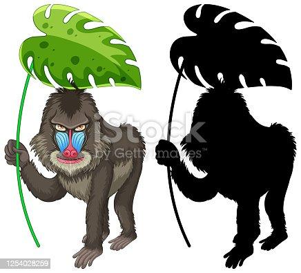 Set of mandrill cartoon and its silhouette illustration