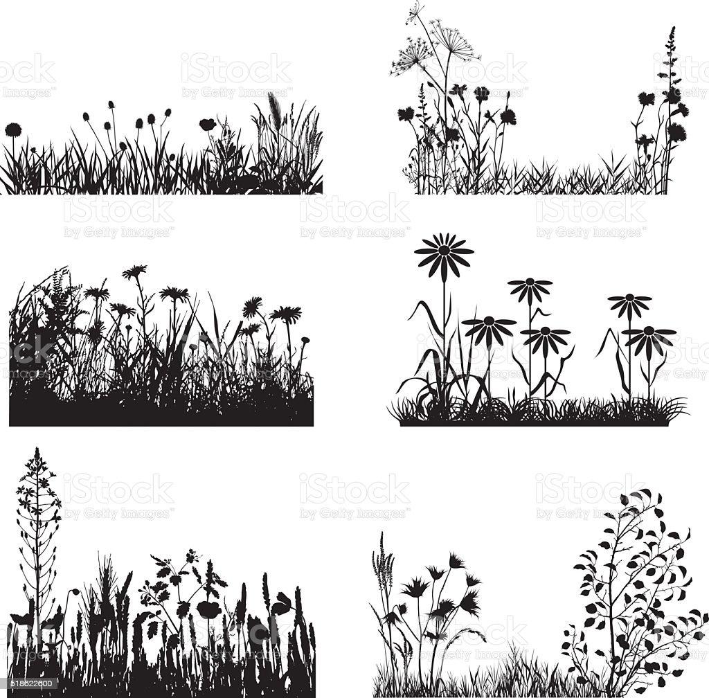 Ein Satz von Wiese Pflanzen – Vektorgrafik