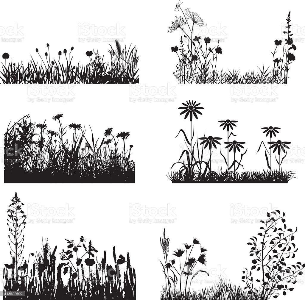 Set of meadow plants vector art illustration