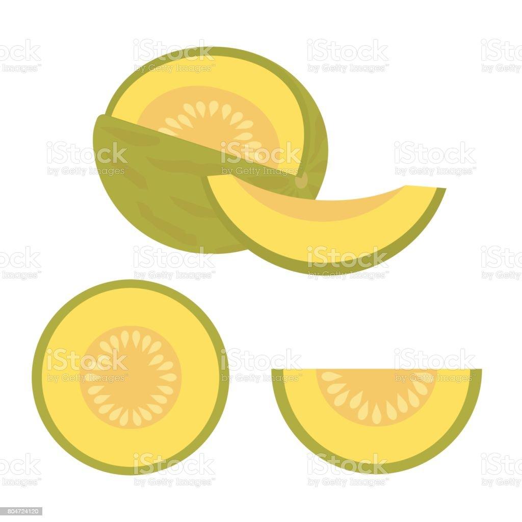 set of melons vector art illustration