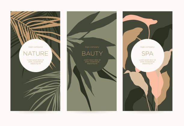 bildbanksillustrationer, clip art samt tecknat material och ikoner med en uppsättning minimalistiska mallar med naturliga blom element för paketering och dekoration av kosmetiska produkter, skönhets salonger och spa. - abstract silhouette art