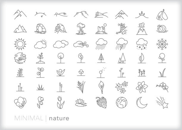 Set of more than 50 nature line icons of land, plants and weather 56 nature line icons of trees, flowers, mountains, landscapes, national park sites, flowers and weather valley stock illustrations