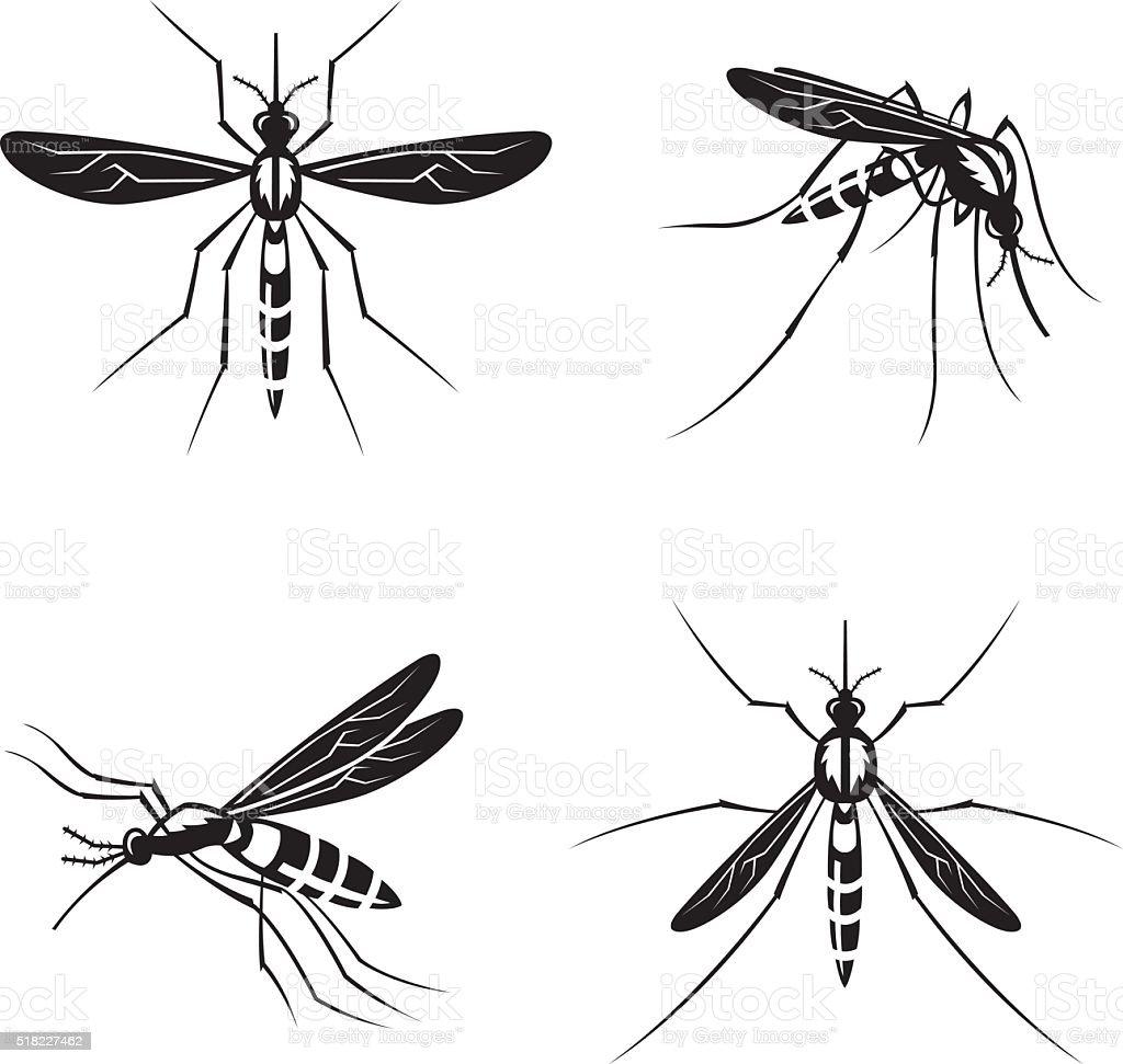 set of mosquito vector art illustration