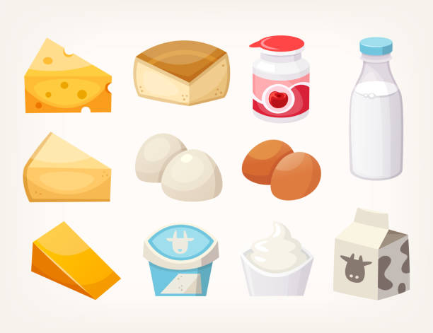 Set of most common dairy food products. Some kinds of cheese, milk packages and yogurts. Set of most common dairy food products. Some kinds of cheese, milk packages and yogurts. Isolated vector illustrations mozzarella stock illustrations