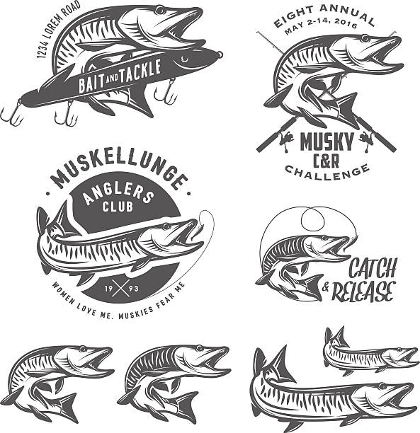 Set of muskellunge musky fishing design elements Set of muskellunge musky fishing design elements. pike fish stock illustrations
