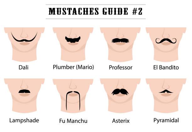 ilustrações, clipart, desenhos animados e ícones de conjunto de bigodes na cara do homem. isolado no fundo branco. ilustração em vetor. - bigode