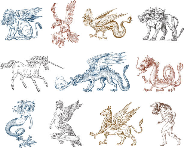 Set of Mythological animals. Mermaid Minotaur Unicorn Chinese dragon Cerberus Harpy Sphinx Griffin Mythical Basilisk Roc Woman Bird. Greek creatures. Engraved hand drawn antique old vintage sketch. vector art illustration