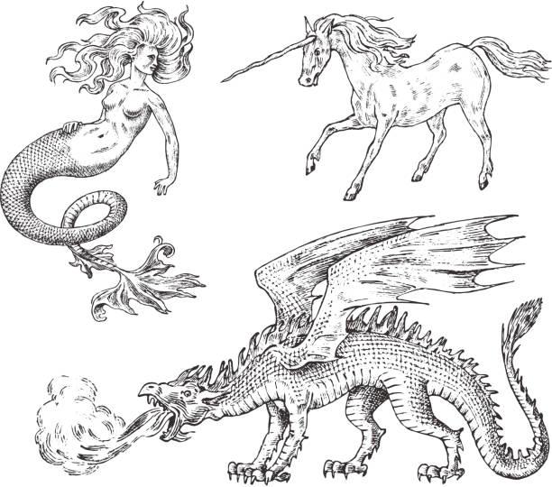set of mythological animals. mermaid unicorn chinese dragon basilisk woman. greek creatures. engraved hand drawn antique old vintage sketch. - mermaid tattoos stock illustrations, clip art, cartoons, & icons